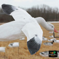 Snow Goose Flyer Decoy