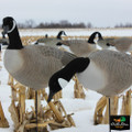 Collapsible Full Body Canada Goose Decoys