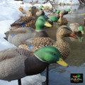 White Rock Collapsible Mallard Decoys