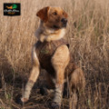 AVERY OUTDOORS SPORTING DOG HI-TOP NEOPRENE DOG BOOTS