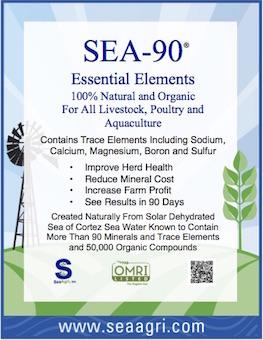 sea-90.jpg