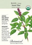Basil Thai Sweet Thai Organic HEIRLOOM Seeds
