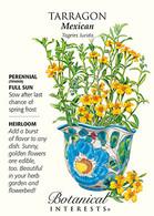 Tarragon Mexican HEIRLOOM Seeds