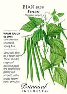 Bean Bush Ferrari Seeds