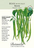 Bean Bush Filet Tavera Organic Seeds