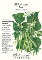 Bean Bush Jade Seeds