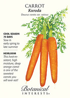 Carrot Asian Kuroda HEIRLOOM Seeds