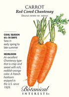 Carrot Red Cored Chantenay HEIRLOOM Seeds