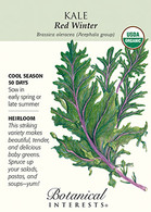 Kale Red Winter Organic HEIRLOOM Seeds