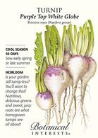Turnip Purple Top White Globe HEIRLOOM Seeds