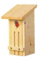 Stovall - Small Ladybug House