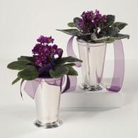 Violets in Silver Vase