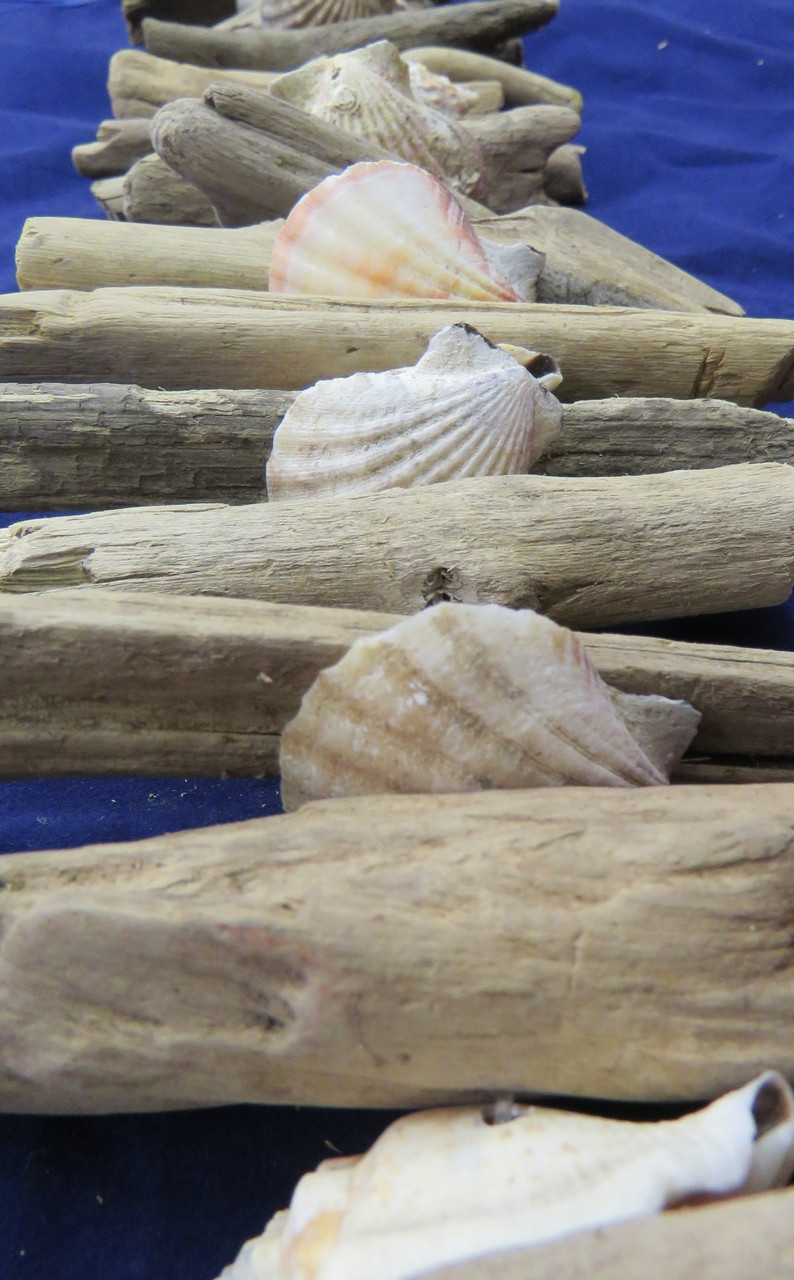 Driftwood Christmas Garland Shells Outer Banks Beach Coastal Decor