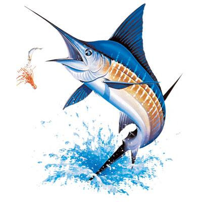 Blue Marlin on Back