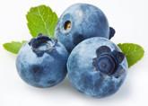 Blueberry   VapeKing