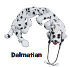 Animal Stethoscope Covers