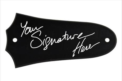 2 hole Taylor acoutic guitar signature trc
