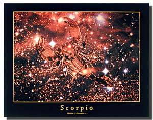 Scorpio Sun Sign Poster