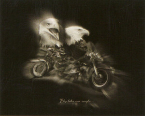 "Black and White Motorcycle ""Fly Like an Eagle"" Wall Decor Art Print Poster (16x20)"