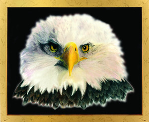 American Bald Eagle National Bird Motivational Golden Framed Wall Decor Art Print Poster (18x24)
