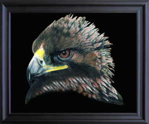 American Bald Eagle Bird Picture Wall Decor  Black Framed Art Print Poster (19x23)