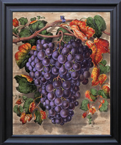Black Grape Still Life Fruit Kitchen Wall Décor Black Framed Art Print Poster (19x23)