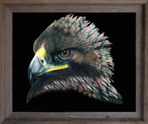 American Bald Eagle Bird Picture Wall Decor  Barnwood Framed Art Print Poster (19x23)