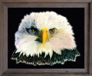 American Bald Eagle National Bird Motivational Wall Décor Barnwood Framed Art Print Poster (19x23)