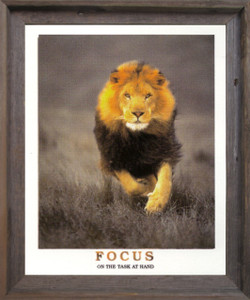 Running Lion Focus On The Task At Hand Wildlife Inspirational Animal  Barnwood Framed Art Print Poster (19x23)