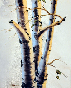 Aspens III Tree Nature Art Print Posters (16x20)