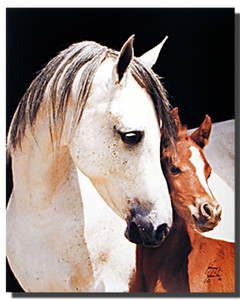 Mare with Foal Poster