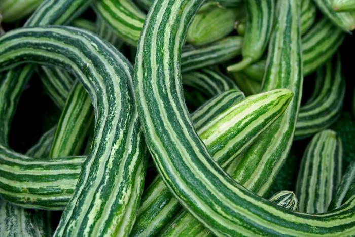 Cucumber - Armenian OG