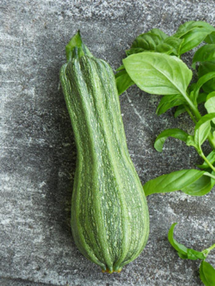 Zucchini - Costata Romanesco OG