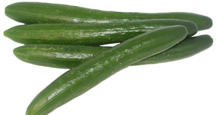 Cucumber - Shintokiwa OG/BD (long-fruited)