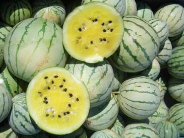 Watermelon - Early Moonbeam OG