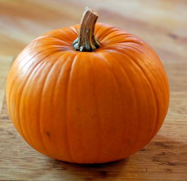 Pumpkin - New England Pie OG