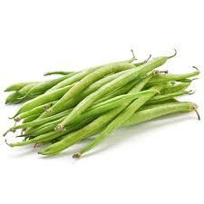 Bean - Maxibel Haricot Vert OG