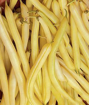 Beans - Golden Wax OG