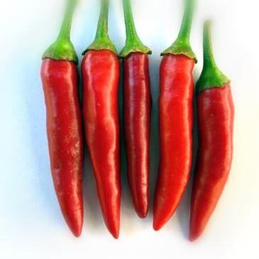 Pepper - Matchbox OG (hot)