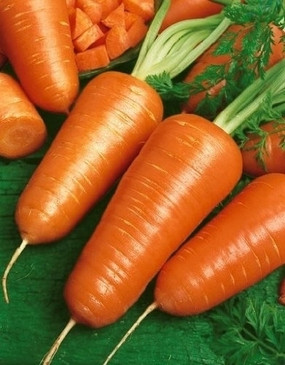 Carrots - Chantenay Red Core OG