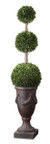 Uttermost Preserved Boxwood Triple Topiary
