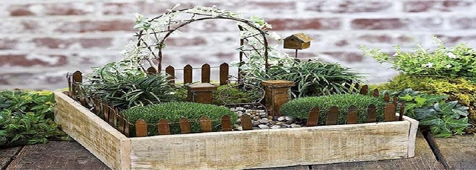 Starter Kits Fairytale Gardens