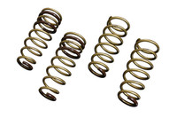 Tein High.Tech Lowering Spring - 03-06 Mitsubishi Evolution 8/9
