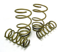 Tein High.Tech Lowering Spring - 98-05 Lexus GS300
