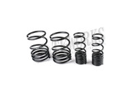 Swift Spec-R Lowering Springs Mitsubishi Evolution 8 9 GSR MR 4M008R / 4M017R