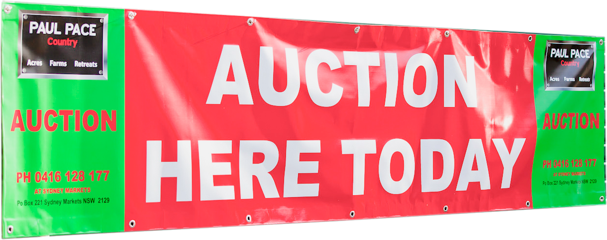 auctionbanner.png