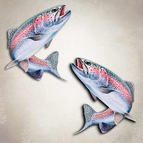 Rainbow Trout Fishing Decal