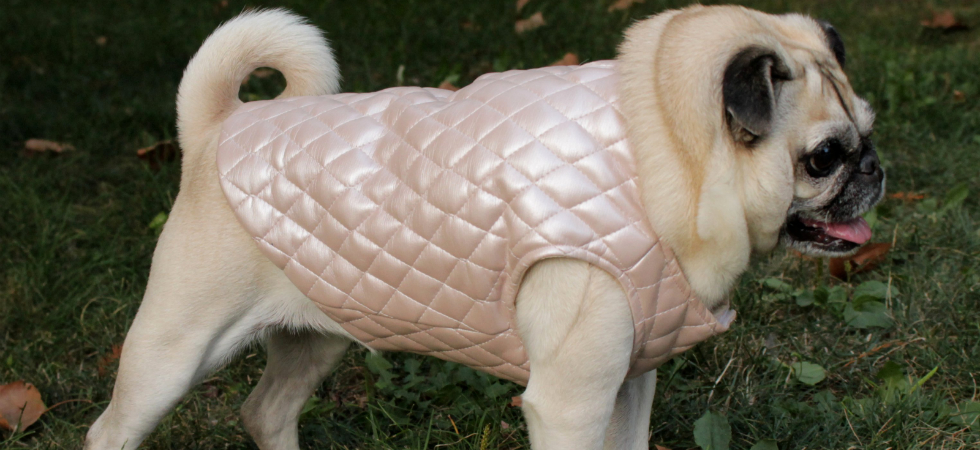 Sophisticated Pup Euroluxe Quilted Vest in Pink Pearl