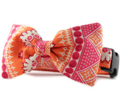 Ishya in Orange Bow Tie Dog Collar