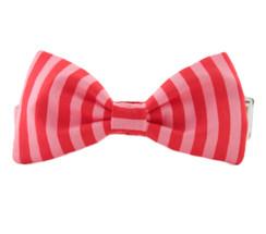 Stacy Bow Tie Dog Collar